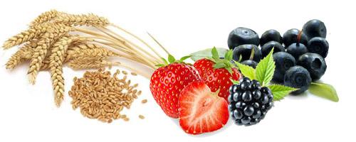 Žitarice sa voćem - Kuhinja Antioksidans. Žitarice sa kravljim mlekom - loša kombinacija. Žitarice sa bobičastim i jagodastim voćem - dobra kombinacija.